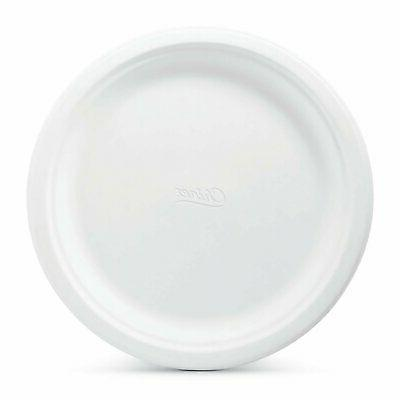 Dinner Plates Chinet Classic White ct.