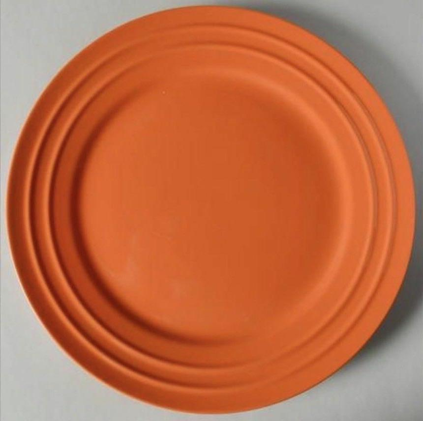 New Set Rachael Ray Double Dishes