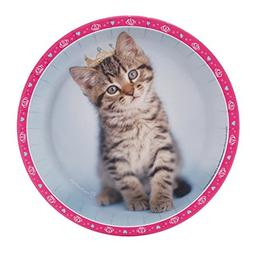BirthdayExpress rachaelhale Glamour Cats Dinner Plates